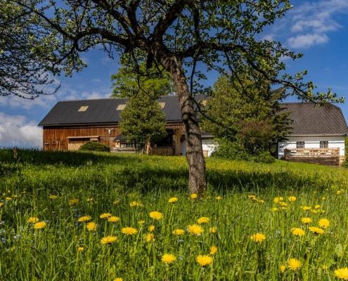 Das Ferienhaus am Berg in der Natur